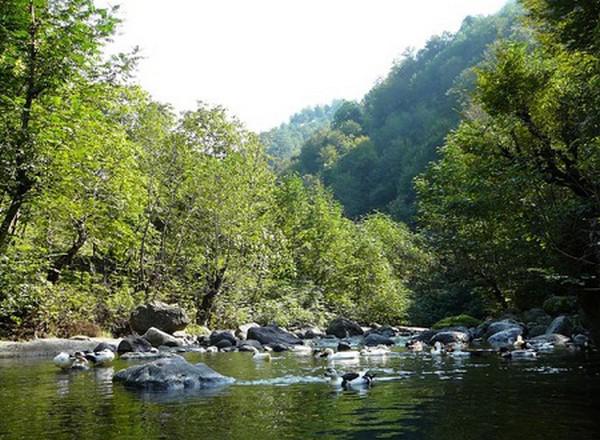 روستای-کوته-کومه_1